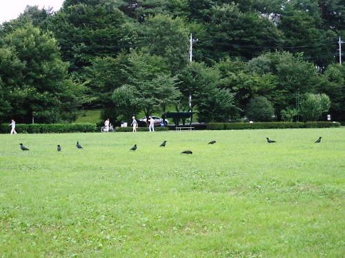9長岡公園519
