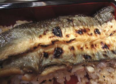 chikuyouura