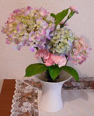 アジサイのお陰でお花買わなくていい(1)(1)