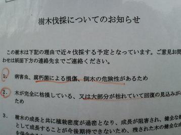 CA3C0013(1)(2).jpg