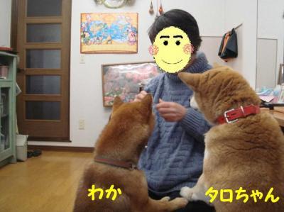 たろちゃん&わか1