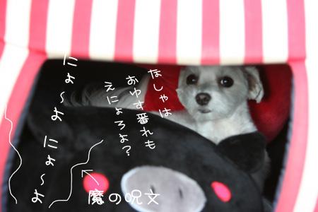 2_19_9405.jpg