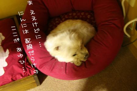 2_22_9883.jpg