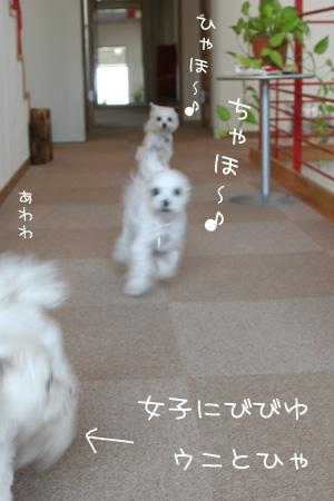2_22_9905.jpg