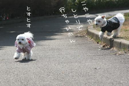 2_23_0320.jpg