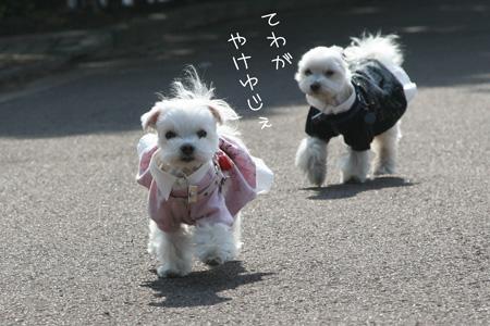2_23_0323.jpg