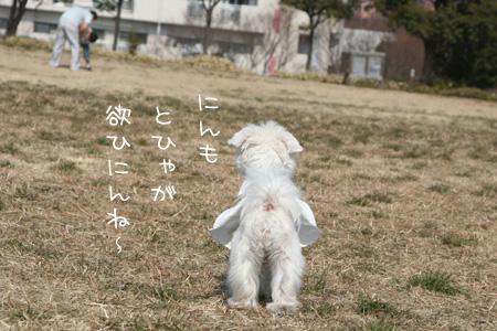 2_23_0356.jpg