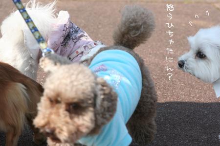 2_23_0393.jpg