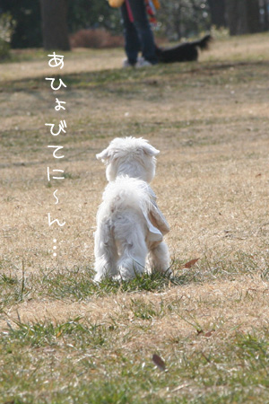 2_23_0421.jpg