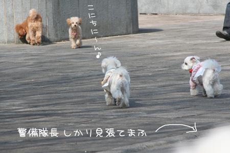 2_23_0441.jpg