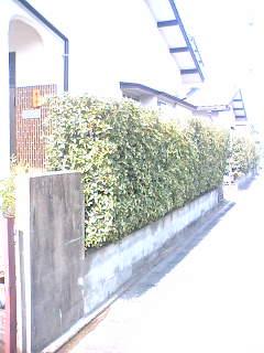 20060930160459