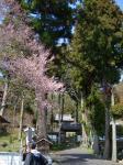 富加の神社