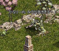 20061210093527.jpg