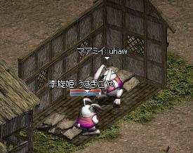 LinC0750qq.jpg