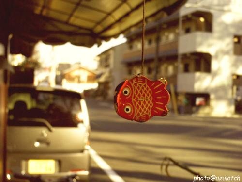 ぶら下がり金魚