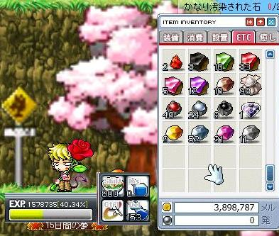 Maple090822_025914.jpg