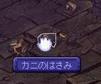 20081022-3.jpg