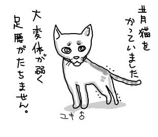 yuki1.jpg