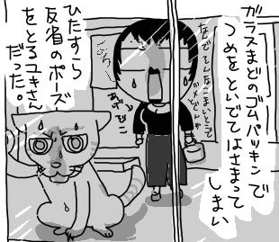 yuki24.jpg