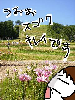 yuri2_edited-1.jpg