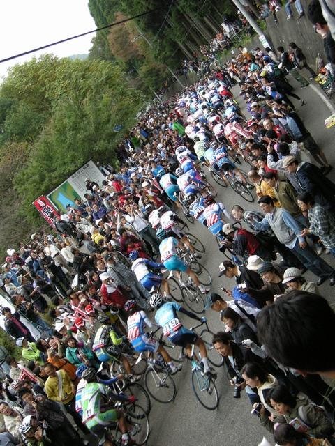 ジャパンカップ スタート2