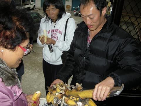 大源製茶所のバナナ
