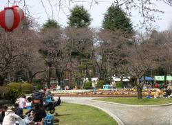 里見公園0328