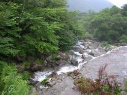 大笹下り渓流0801