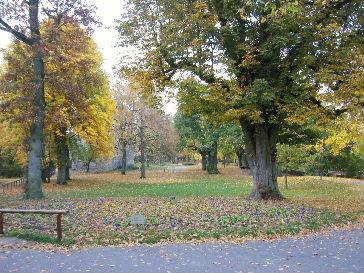 ローテンブルク ブルク庭園