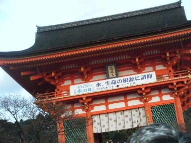 京都花見4