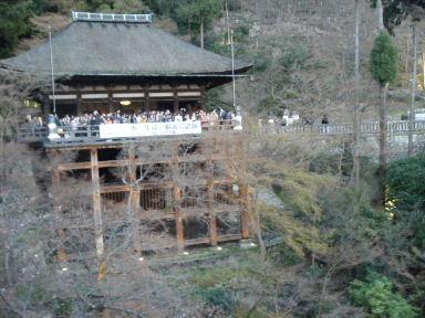 京都花見8