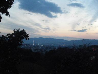 京都花見9