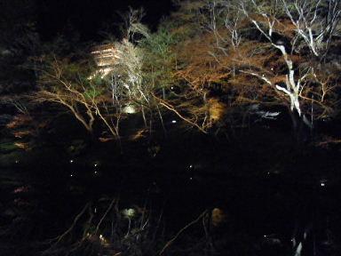 京都花見13