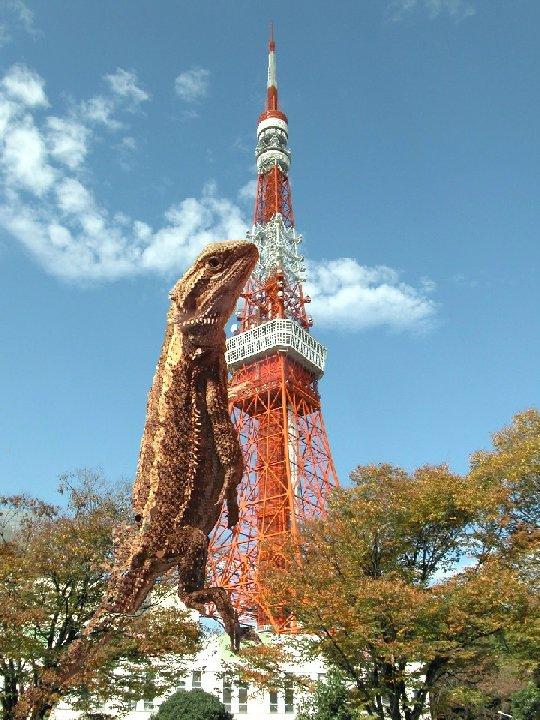 東京タワーとモカラ