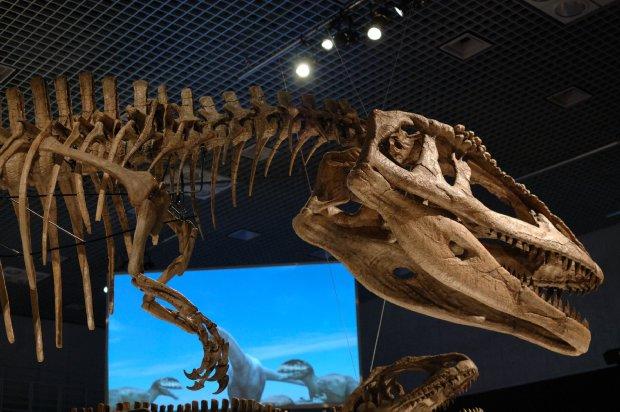 大恐竜展4