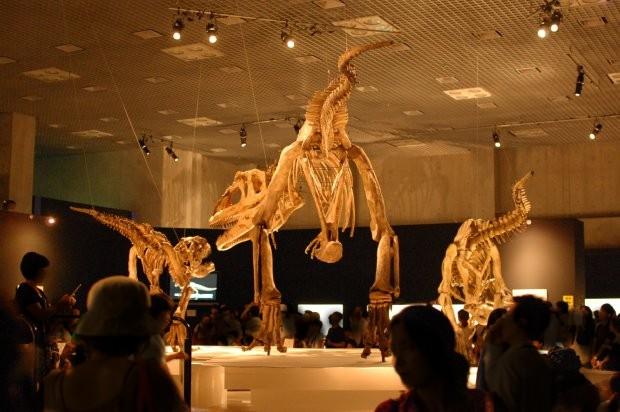 大恐竜展5