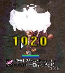 20050211200811.jpg