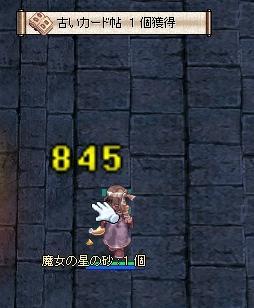キタ━━━━ヽ(・∀・ )ノ━━━━!!!