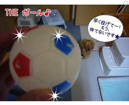 ボール待ちぃ~♪