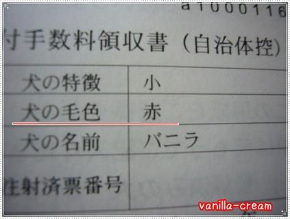 狂犬病(バニ)②