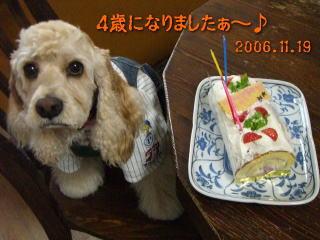 20061120103801.jpg