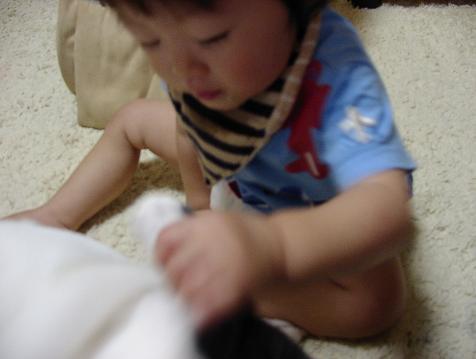 6_20090821194639.jpg