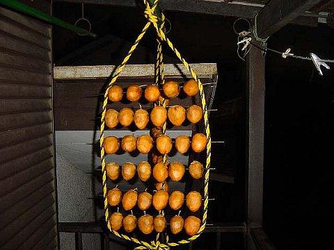 2005 11 12  干し柿.