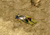死亡・・・