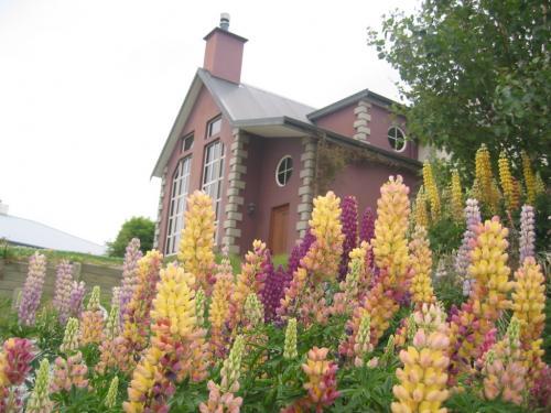 我が家の花園 08_convert_20081124150313