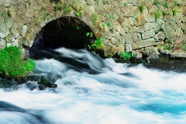 柿田橋付近