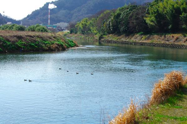 狩野川下流方向