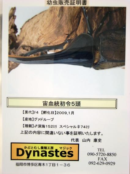 R0011197.jpg