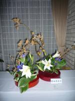 2008七五三作品展 006