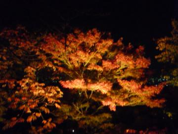 京都 021
